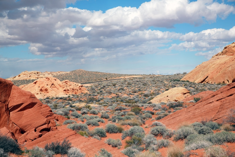 Valley-Of-Fire3