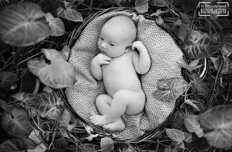 Bébé dans un panier au milieu des feuilles