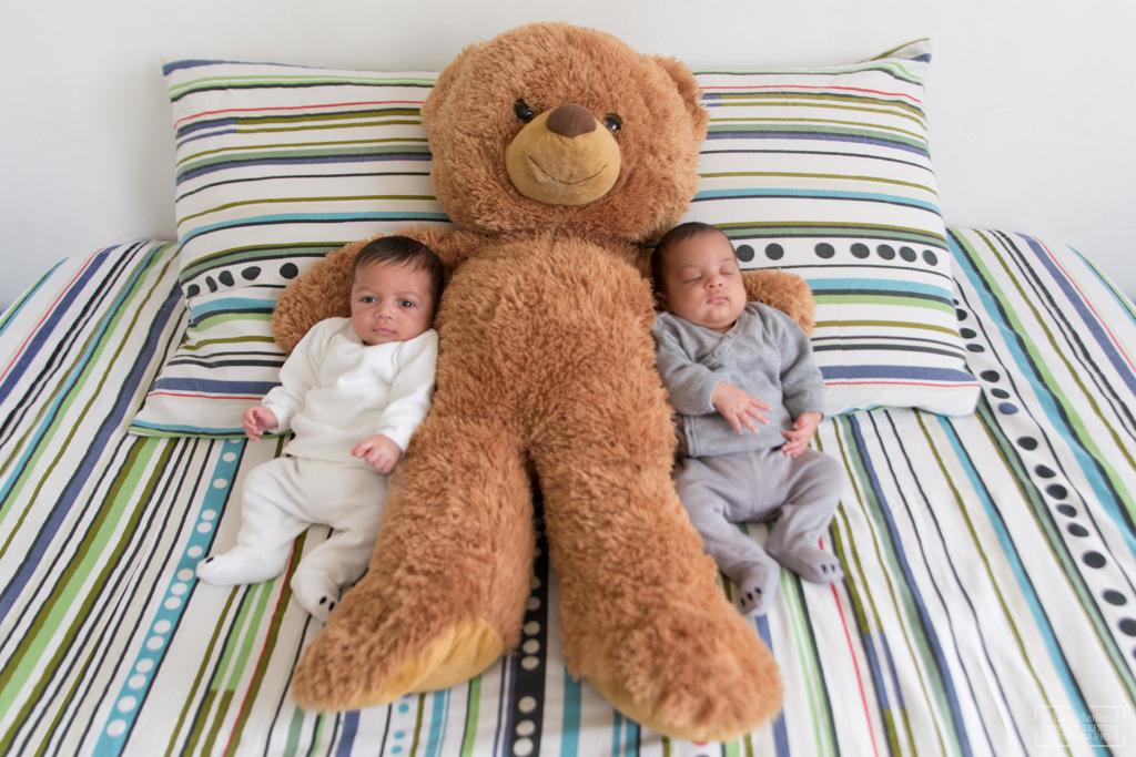 photos de naissance jumeaux a domicile a Eaubonne