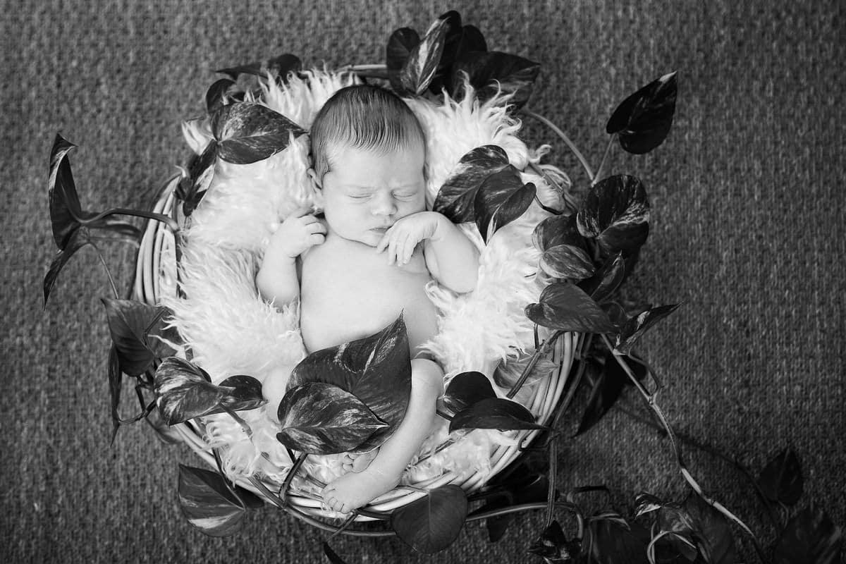 Photos de naissance à domicile photographe à Paris