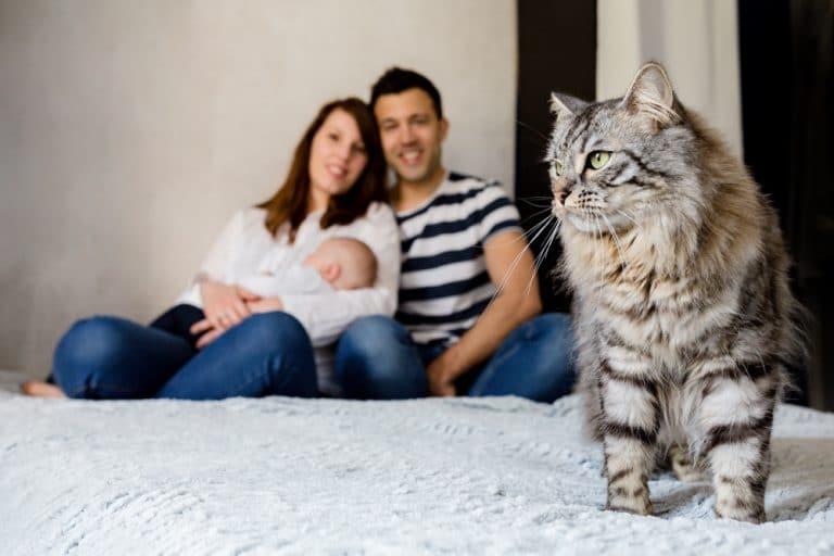 Photographe à Bois Colombes photos de bébé à domicile